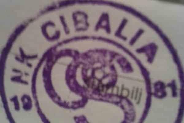 Kada je Cibalia inspiracija – klub iz distrikta Brčko po uzoru na Vinkovčane