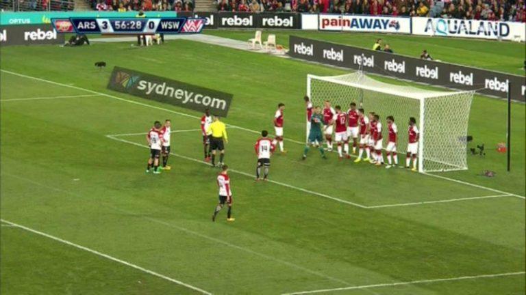 Steven Luštica Arsenal